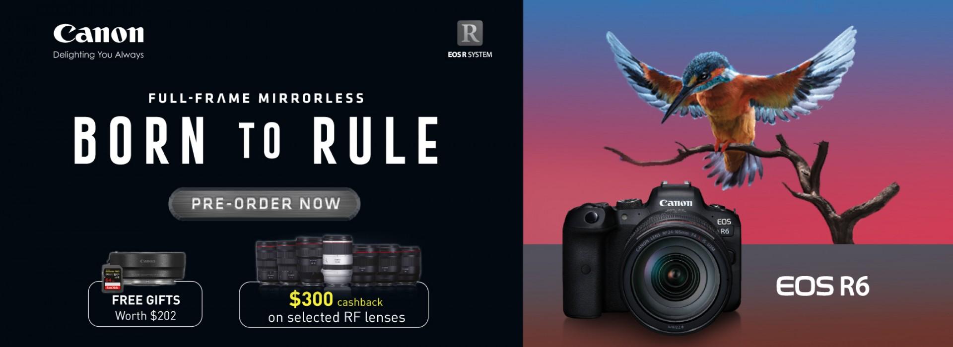 Canon EOS R6 Preorder